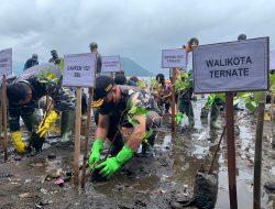 Danrem 152 Babullah Ikut Tanam Pohon Mangrove pada SBJ TNI-AL